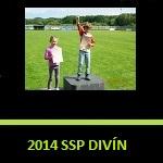 2014 ssp divin